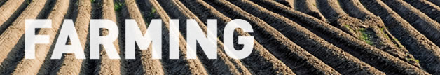 Farming Services performed by M.D. Construction - farm land preparation and leveling, field surveying and mapping, GPS precision grading, laser grading, agriculture field design, discing and plowing